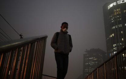 Алергиите от домашен прах увреждат ДНК