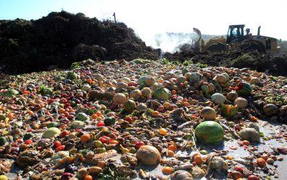 Американците изхвърлят храна за $160 млрд. на година