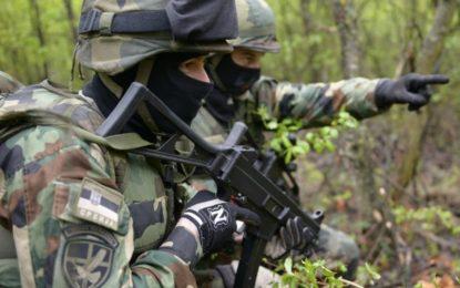 Сръбската армия работи повече с НАТО, отколкото с Русия