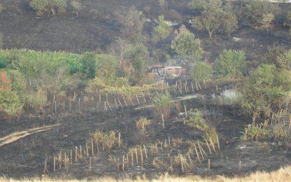180 пожара за денонощие лумнаха и загасиха у нас