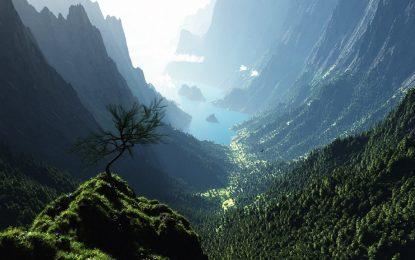 Човечеството е унищожило 10% от дивата природа