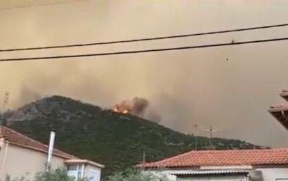Тасос гори втори ден, българи напускат острова