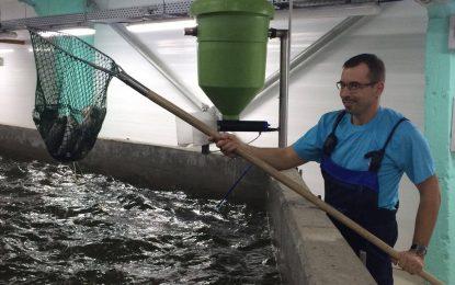 Ферма за сьомга отваря в Самоков